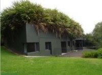 zelene-strechy-2_0.jpeg